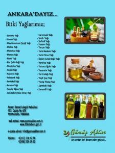 Gumus Aktar_ Yaglar 2